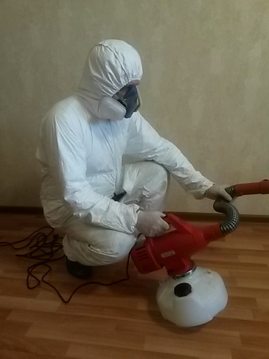 pest control insects Kolomna