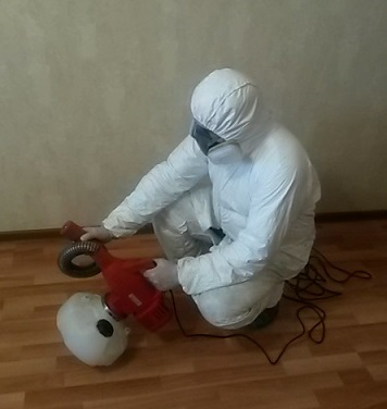 pest control insects Vysokovsk
