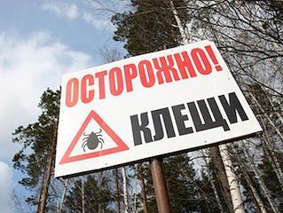 Акарициды – средства против клещей - StopVreditel ru
